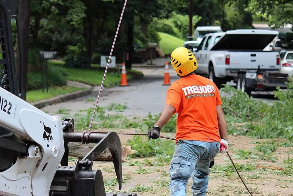 Arborist Consultations-Lubbock Tree Trimming and Stump Grinding Services-We Offer Tree Trimming Services, Tree Removal, Tree Pruning, Tree Cutting, Residential and Commercial Tree Trimming Services, Storm Damage, Emergency Tree Removal, Land Clearing, Tree Companies, Tree Care Service, Stump Grinding, and we're the Best Tree Trimming Company Near You Guaranteed!