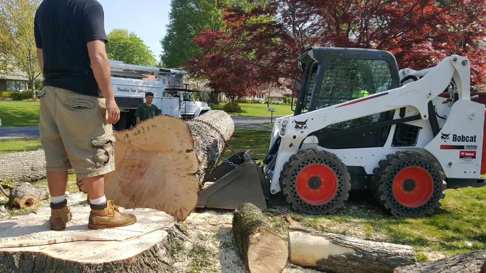 New Deal-Lubbock Tree Trimming and Stump Grinding Services-We Offer Tree Trimming Services, Tree Removal, Tree Pruning, Tree Cutting, Residential and Commercial Tree Trimming Services, Storm Damage, Emergency Tree Removal, Land Clearing, Tree Companies, Tree Care Service, Stump Grinding, and we're the Best Tree Trimming Company Near You Guaranteed!